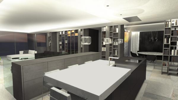 maison_design_architecte_lyon_sejour